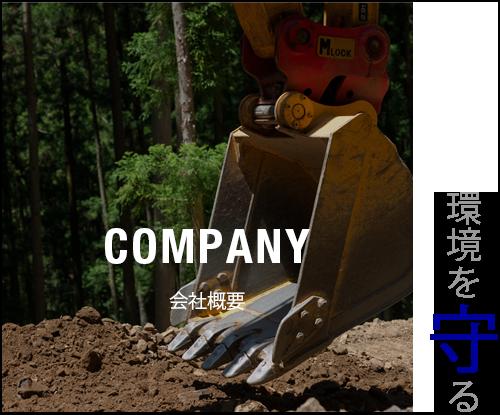 bnr_half_company